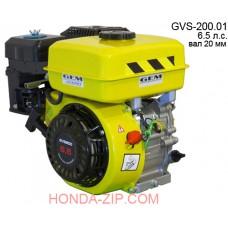 Двигатель бензиновый GVS200.01