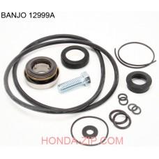 Комплект ремонтный помпы BANJO 200P6PRO для перекачки КАС для патрубка 50мм