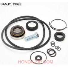 Комплект ремонтный помпы BANJO 300P11PRO для перекачки КАС для патрубка 80мм