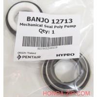 Сальник мотопомпы BANJO 200 PHY для перекачки КАС для патрубка 50мм